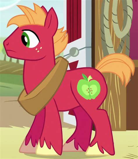 sugar magic a dash of trouble books big mcintosh my pony friendship is magic wiki