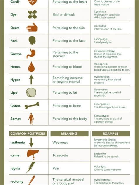 medical terms image gallery medical terms