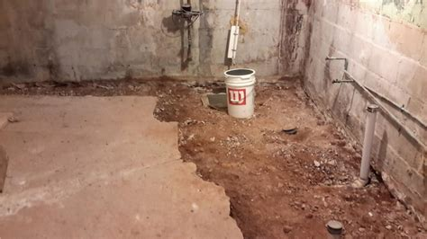 buying a house with mold in basement buying a house with mold in basement 28 images 100 cost to remove mold in basement