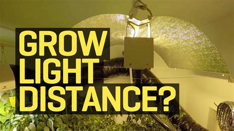 how far should led grow lights be from plants how far should my growlight be from my plants