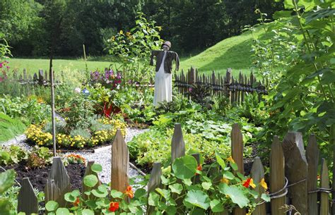 vegetable garden design ideas  designing  vegetable