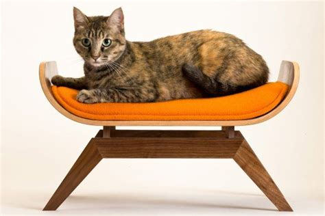 102 best images about just for pets on chairs