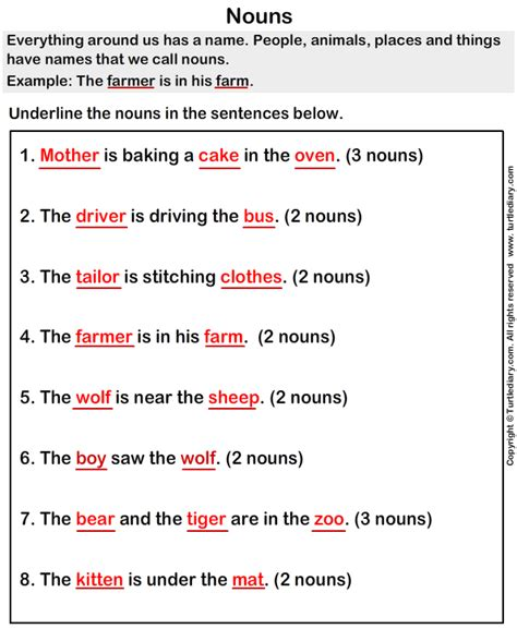 grammar noun worksheets with answers underline the nouns worksheet turtle diary