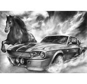 Shelby Mustang Drawings By Shadowmarim
