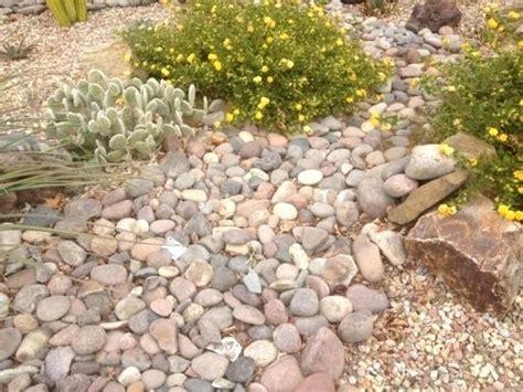 Lowes Landscape Rock Lava Rock Mulch In A Flower Bed Lowes Lowes Garden Rocks