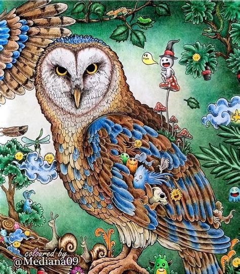 imagimorphia 20 posters to 212 best art lessons coloring books images on coloring coloring book chance
