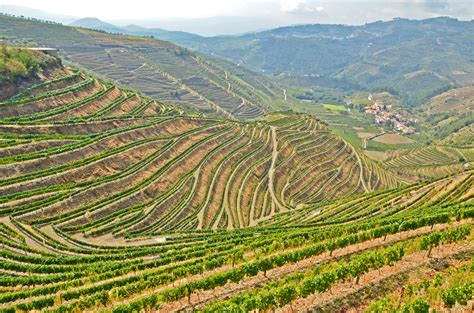boat trip up the douro river full day trip in douro valley with lunch boat trip and
