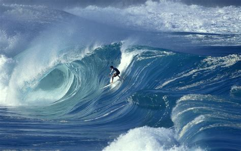 wallpaper wave surfing big wave waimea shorebreak