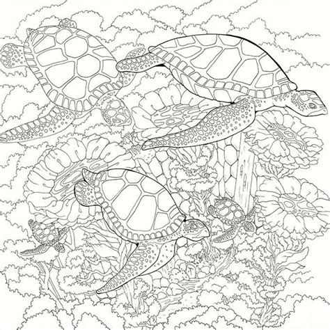 marvelous sea turtles coloring book for adults stress relief coloring book for grown ups books 421 best images about seas of coloring pages on