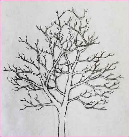 easy things to draw nature simple image gallery