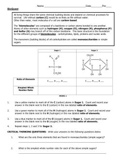 carbohydrates vocabulary chemistry of carbohydrates worksheet mmosguides
