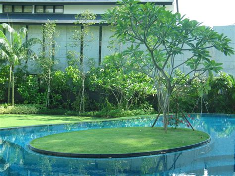 House Planning Design Tanglin Hill House Singapore Stephen Caffyn Landscape