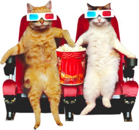 1401943276 the dalai lama s cat and the dalai lama s cat movie leaps forward david michie