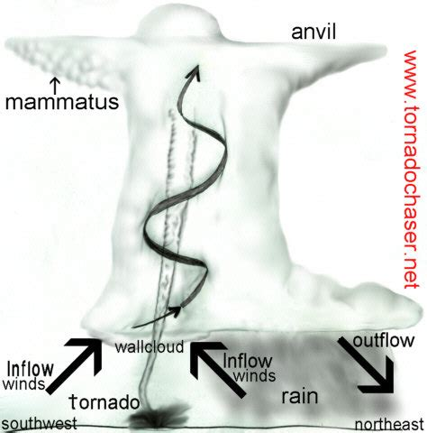 diagram of how a tornado forms side view of a thunderstorm with a tornado severe
