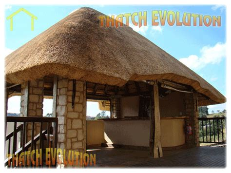 great thatch roof designs top design ideas for you 320