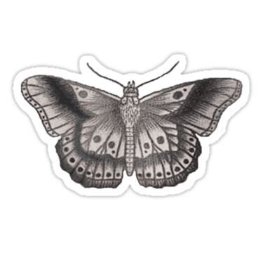 harry styles butterfly tattoo best 25 harry styles tattoos ideas only on