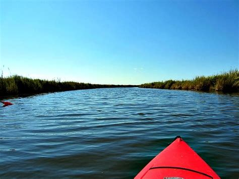 duck nc boat tours the top 10 things to do near outer banks boat tours duck
