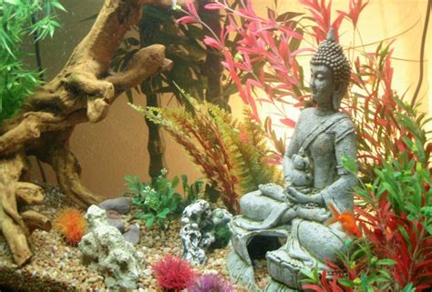 fish tank in bedroom feng shui life with feng shui live your life to the fullest using
