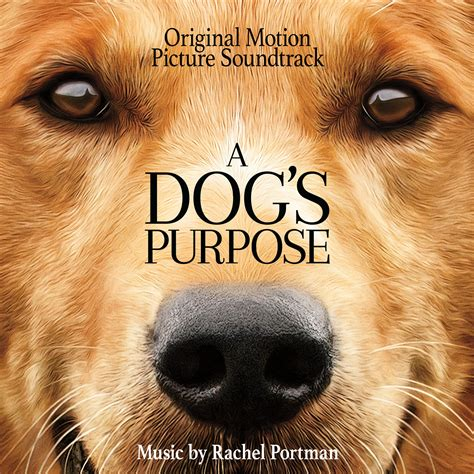 a s purpose a s purpose original motion picture soundtrack