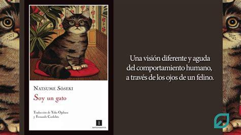 libro un gato y un libro recomendado soy un gato de natsume soseki youtube