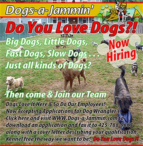 dogs a jammin dogs a jammin woodinville wa