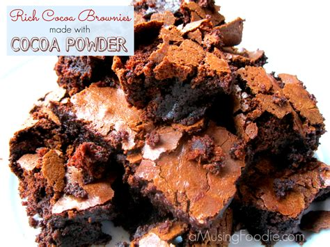 chocolate recipe rich and chewy cocoa brownies a musing foodie