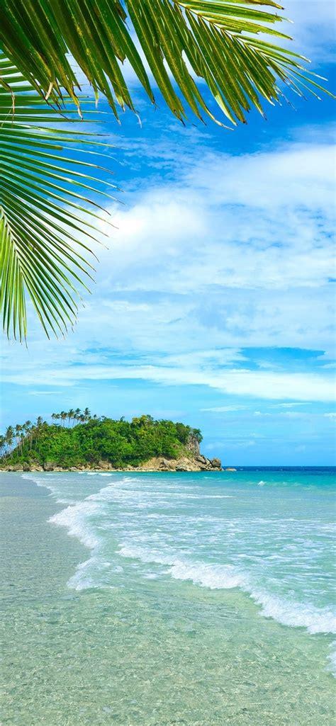 wallpaper blue sea  sky beach coast palm trees