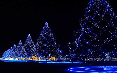 Tree Lights Christmas Wallpaper Hd Wallpapers Lights Trees