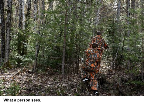 valley news strafford family invents  hunting camouflage