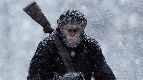 War For The Planet Of The Apes 2017 Dvd andy serkis the war for the planet of the apes on how performance capture is the end of