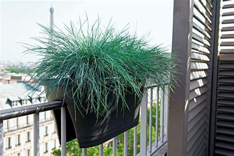 fioriere in plastica per esterno fioriere in plastica vasi tipi di fioriere in plastica