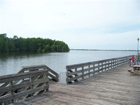 Santee State Park Cabin Rentals by Cabins On Pier Picture Of Santee State Park Santee