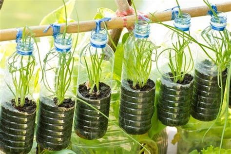diy recycled plastic bottles for garden decor recycled