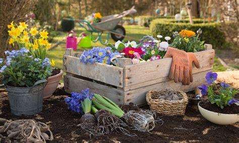 cosa piantare in giardino orto autunno cosa piantare non sprecare