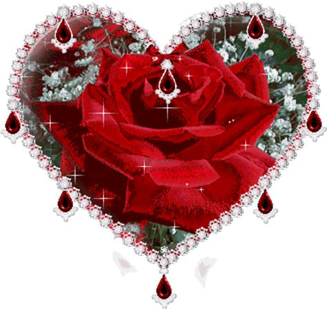 sparkle heart red rose animation gallery mutassim
