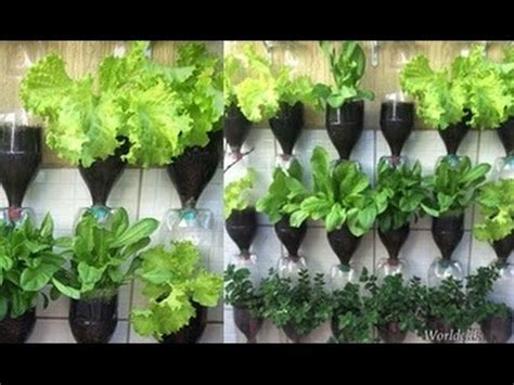 plastic bottle vertical garden ideas pondic