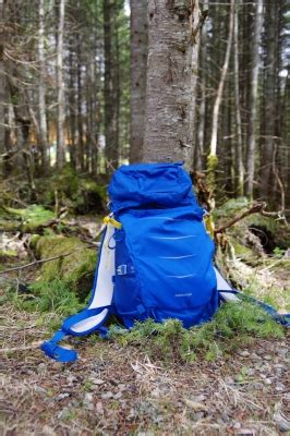 lowepro photo sport bp 200 aw ii review user report