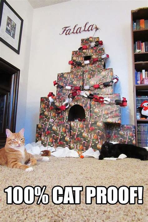 i have a cat need cat proof xmas tree cat proof decorations hip forums