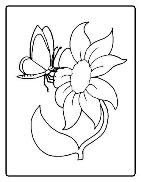 flower color pages flowers coloring pages who think