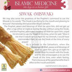 6 fruits mentioned in the quran fruit mentioned in quran date fruit al quran surah al