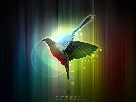 colors of peace peace colours by injured eye on deviantart