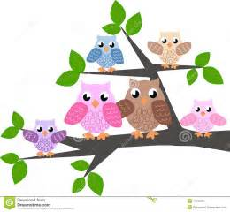 Mae Wall Stickers a cute owl family stock vector image of cartoons colour
