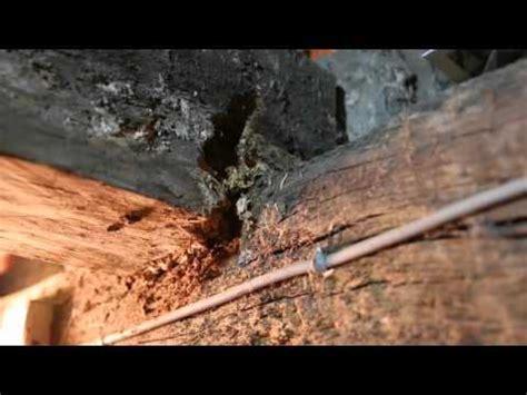 Reparer Une Poutre Vermoulue reparation poutre par mortier a bois
