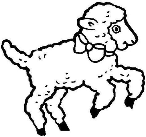 coloring pages of baby lamb clipart best