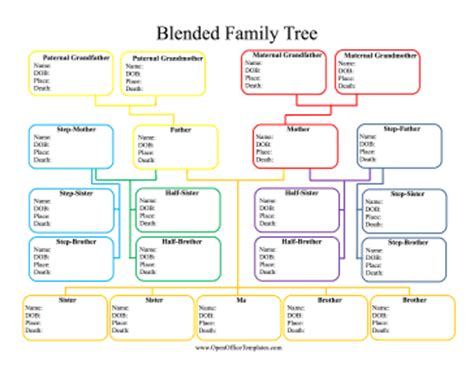 microsoft family tree template 5 family tree word templates excel xlts