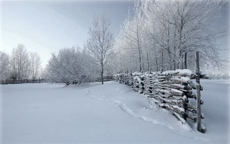 wallpaper abyss winter winter full hd wallpaper and background image 1920x1200
