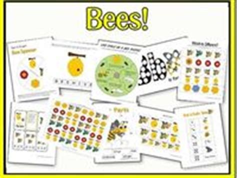 images of bee curriculum for preschool 43 best images about bees on pinterest math lesson plans