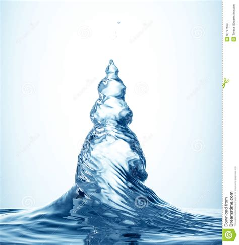 how do i water a christmas tree when away shape of tree stock photo image of breath 35747164