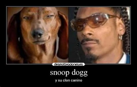 Snoop Dogg Meme - carteles y desmotivaciones de snoop dogg
