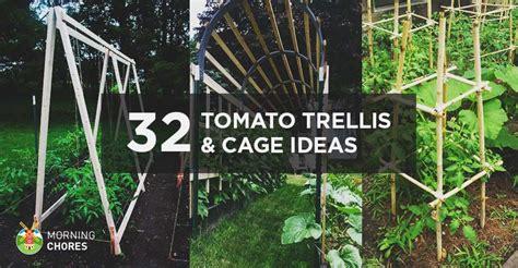 diy tomato trellis cage ideas  healthy tomatoes